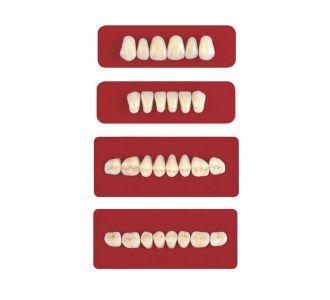 Акриловые зубы Unicryl боковые верхние форма 12 цвет B3 8шт